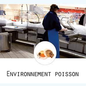 Tournus Equipement Mobilier Cuisine Professionnelle